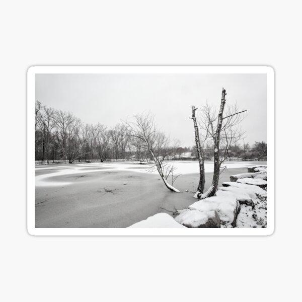 Dead Cold Winter Sticker