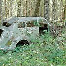 Old Car in the Forest - 24739 by BartElder