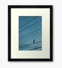 Wader | East Moriches, New York Framed Print