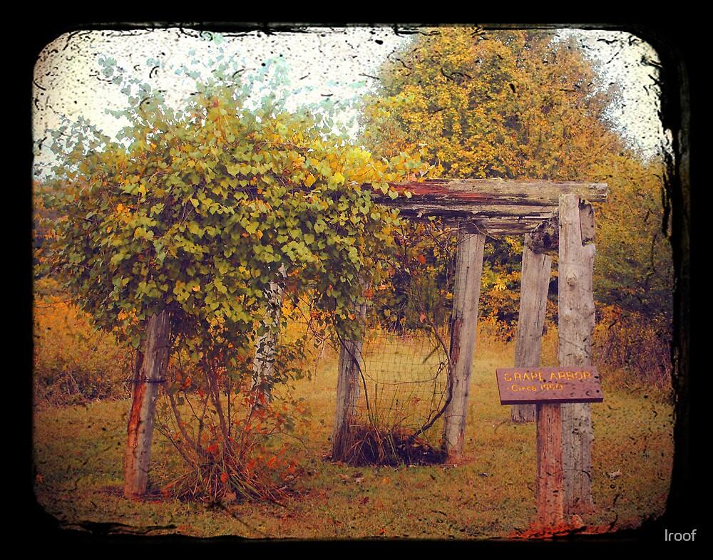 Uwharrie Grape Arbor (TTV) by lroof