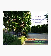 I Want Jesus To Walk With Me Photographic Print