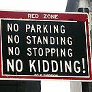 New York City Traffic Sign by Bev Pascoe