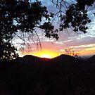Sunset In The San Bernardino Mountains-1 by Bearie23