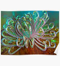 UNFURLING FEATHER Poster