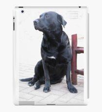 Best companion iPad Case/Skin