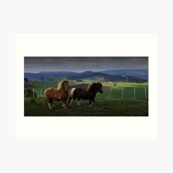 Two Ponies Art Print