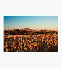 Daybreak at Doro Nawas Photographic Print