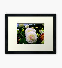 A Touch Of Colours Framed Print