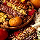Fall harvest by Garry Gay