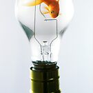 Goldfish in light bulb  by Garry Gay