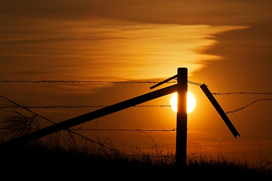 Prairie Fence At Sunset by Mark Iocchelli