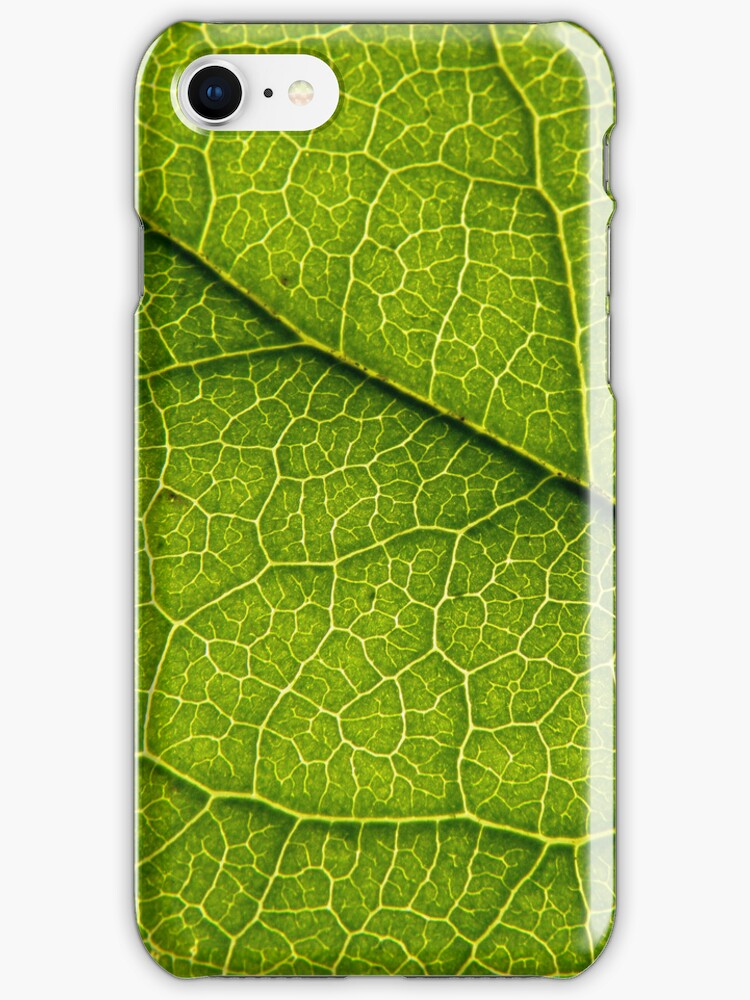 iPhone Leaf <3 by eleveneleven