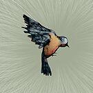 Scribbler Bird Iphone Case by Sarah  Mac