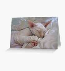Oliver Sleeping Greeting Card