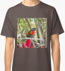 Rainbow Lorikeet sat on a metal structure Classic T-Shirt