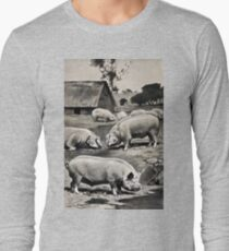 Friedrich Wilhelm Kuhnert Eight pigs on a meadow near a wallow with a thatched barn in Wellcome V0021172 T-Shirt