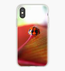 Ladybird on Cordyline iPhone Case iPhone Case