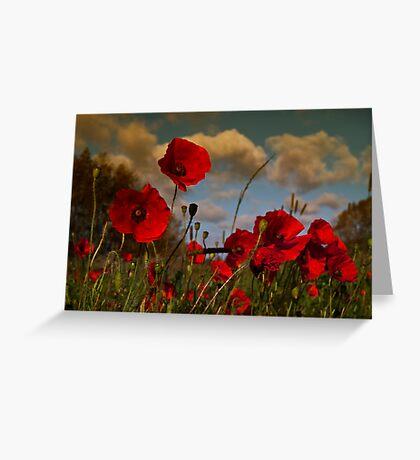 Poppy Field 2 Greeting Card