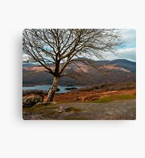 kerry hills Canvas Print