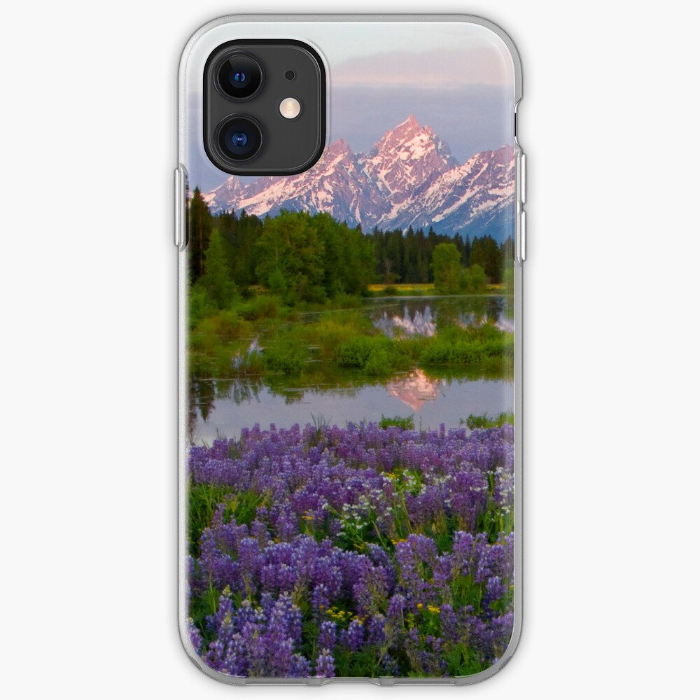 Lupine Explosion in the Tetons (iPhone4 Case) iPhone Case & Cover