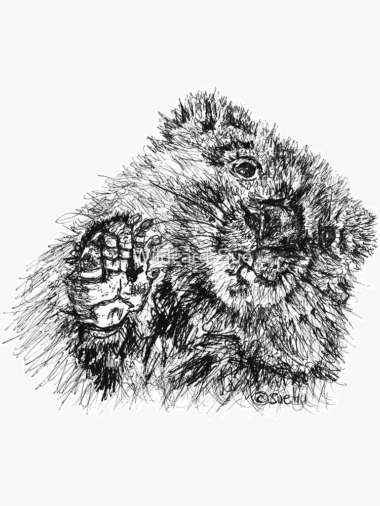 Willie the Wombat by Wildcard-Sue