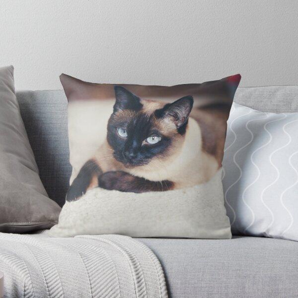 sleeping siamese cat Throw Pillow
