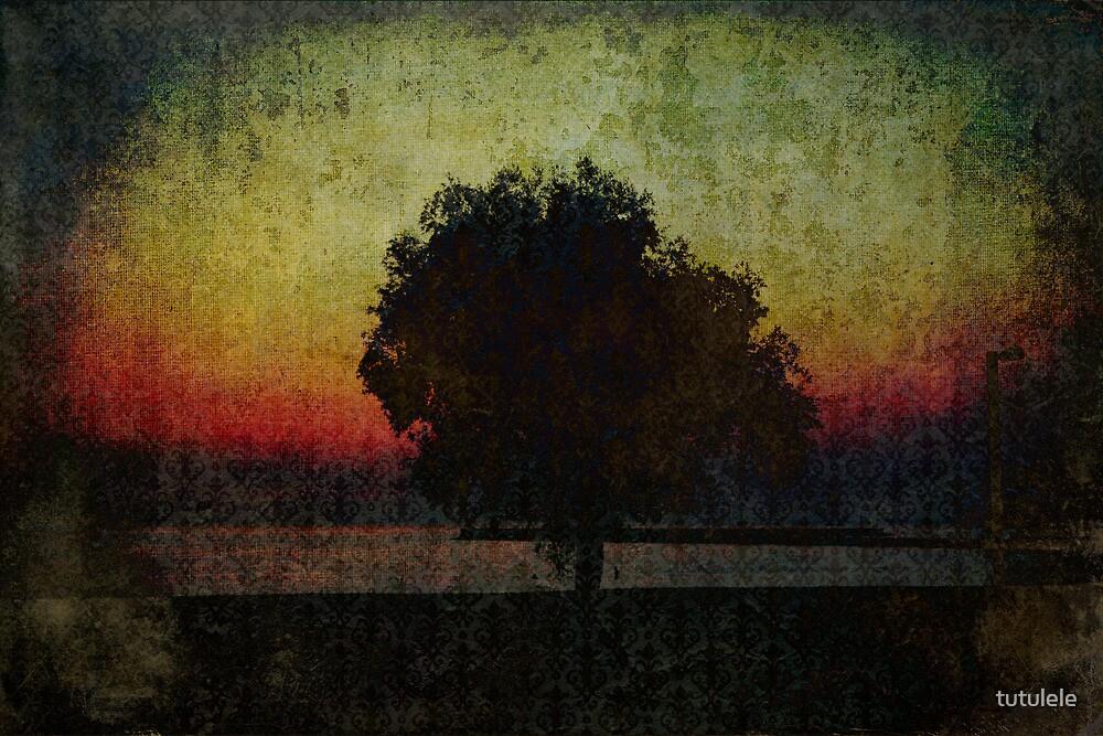 Sunset. Tree. Sea. by tutulele