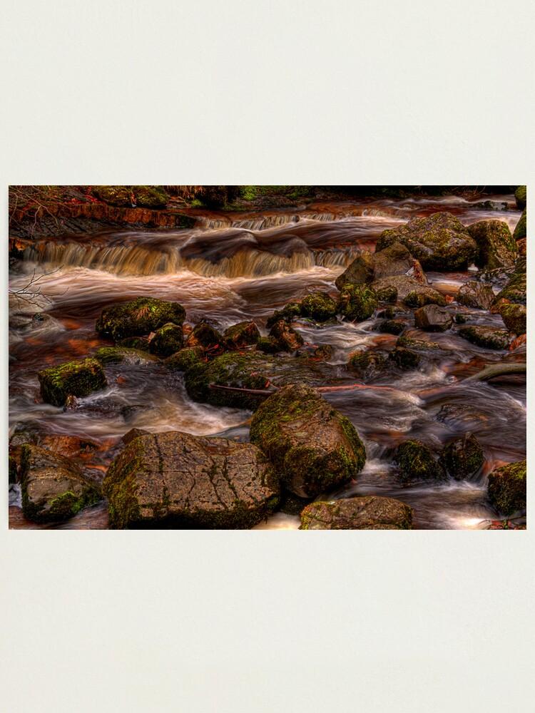 Alternate view of Campsie Glen (1) Photographic Print