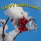 Christmas card: berries in the snow by GrahamCSmith