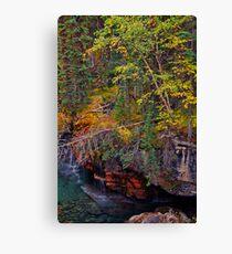Canada. Canadian Rockies. Jasper NP. Maligne Canyon. Fall Colors. Canvas Print