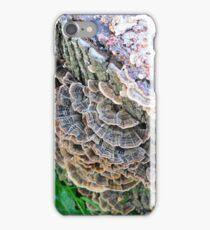 Turkey Tails iPhone Case/Skin