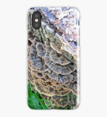 Turkey Tails iPhone Case