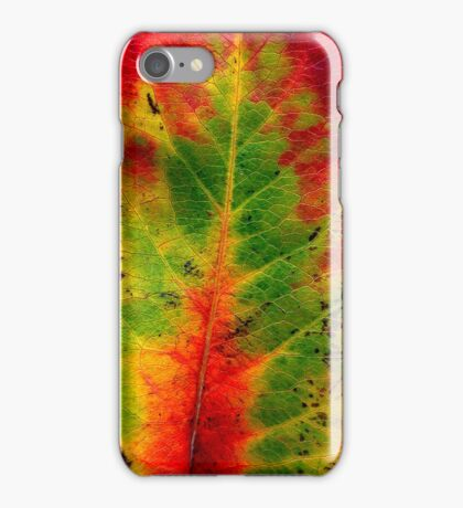 Leaf iPhone Case/Skin