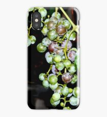 Grapes iPhone case iPhone Case/Skin