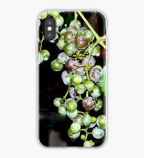 Grapes iPhone case iPhone Case