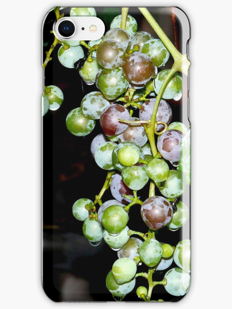 Grapes iPhone case by andytechie