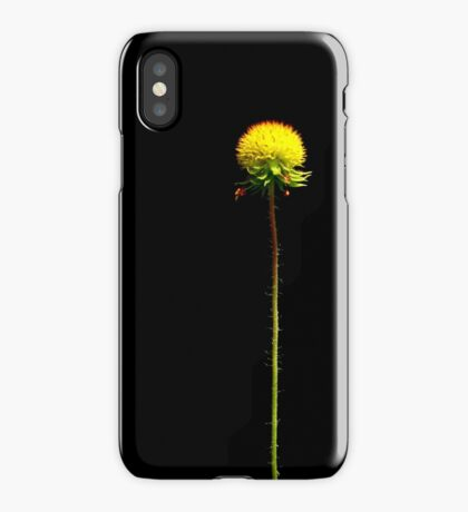 Botanical iPhone Case iPhone Case/Skin