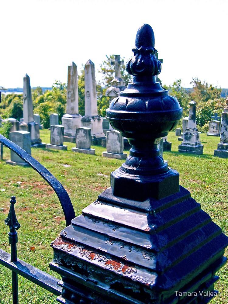 Graveyard Gatepost by Tamara Valjean