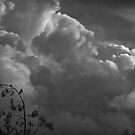 Threatening Sky by Heather Friedman