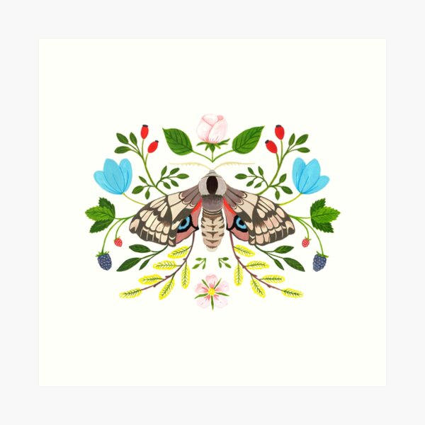 Moth with Berries and Rosehip Art Print