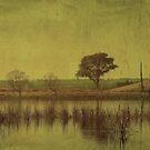 The Lagoon by Kitsmumma