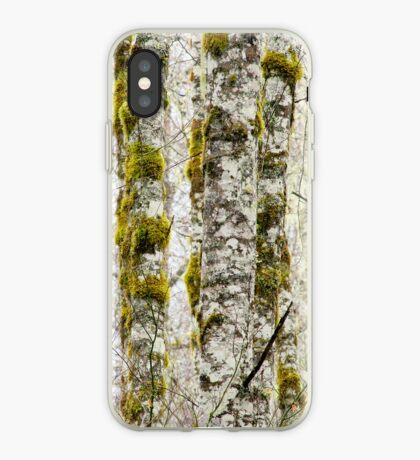 The Forest Through The Light iPhone case.  iPhone Case