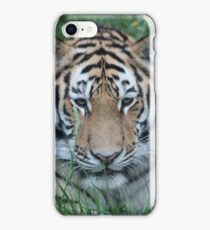 Tiger Stripes iPhone Case/Skin