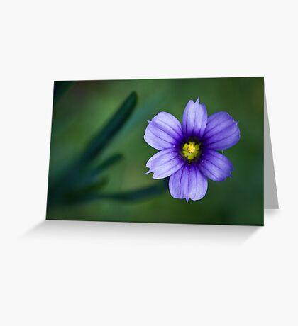 Vivid Greeting Card