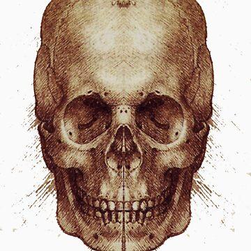 Leonardo Da Vinci Skull by DragonLantern