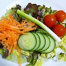 The Healthy Choice! by Sharon Brown