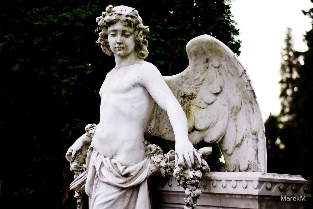 The white angel by MarekM