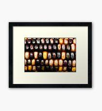 Ornamental Corn Framed Print