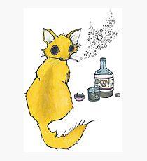 Bar Cat Photographic Print