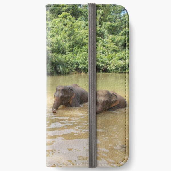 Elephants A-Washin' iPhone Wallet